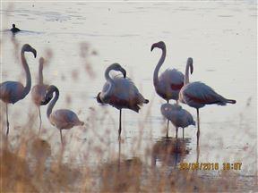 Lourenza Wildlife Reserve