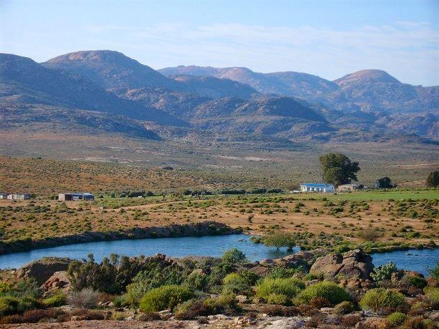 pet friendly Springbok