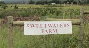 Sweetwater Farm Cottages