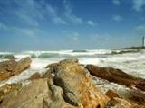 Sealpointlodge - Cape St Francis.Home of the Endless Summer! accommodation