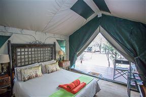 Tydon Bush Camp - SPID:1934741
