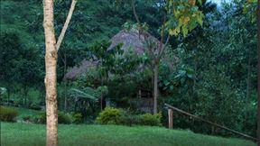Nshongi Camp