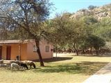 B&B2010649 - South Africa