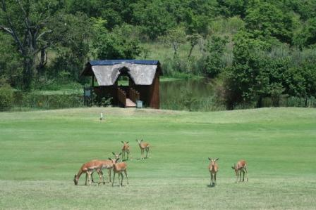 Jabulani Kruger Park Lodge In Hazyview
