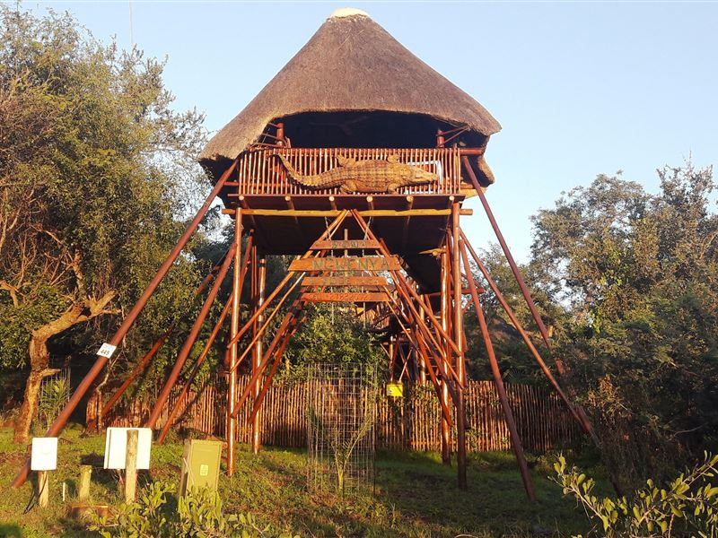 Marloth Park Bona Ngwenya Lodge