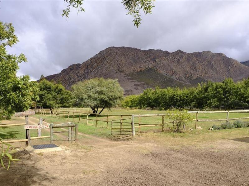 De Bos Guest Farm Montagu Your Cape Town South Africa