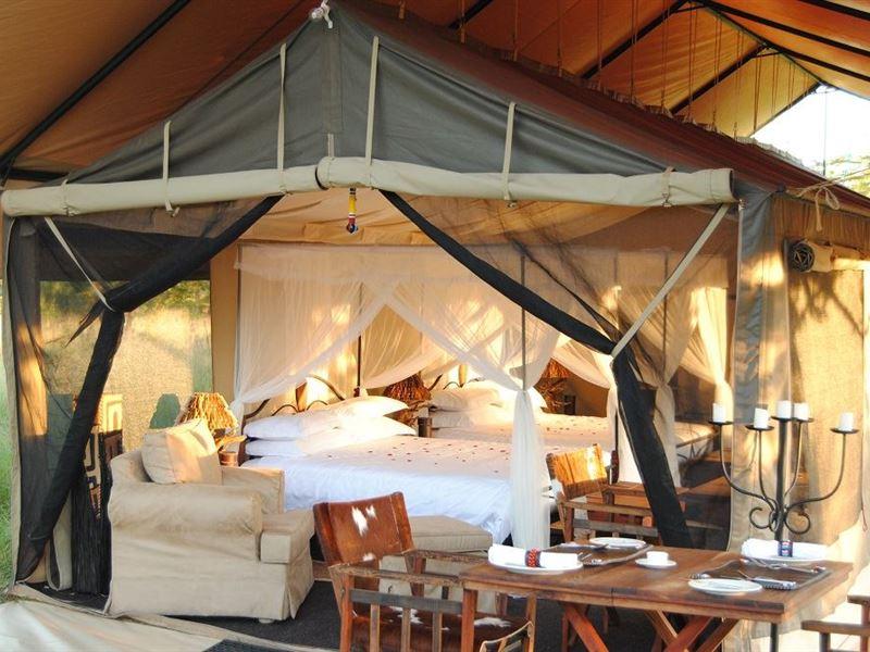 Serengeti Tanzania Bush Camp Serengeti National Park