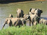 Kruger View Chalets-2299398