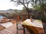 Chandelier Game Lodge & Ostrich Show Farm accommodation