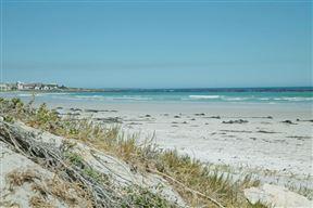Beach Living Apartment - SPID:2325032