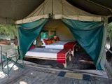 Orange River Tented Camp accommodation