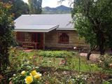 Periwinkle Grove Cottages-2357812