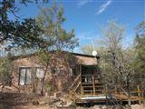 Bush Cabana-2361645