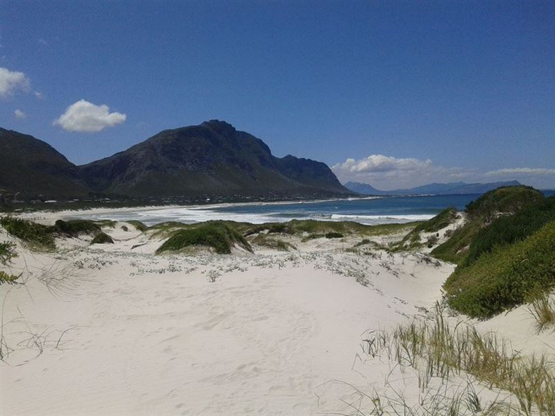 Betty S Bay Beach Flatlet Bettys Bay Your Cape Town