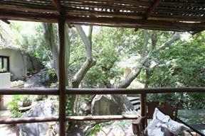 Little Forest Guesthouse, Parkhurst