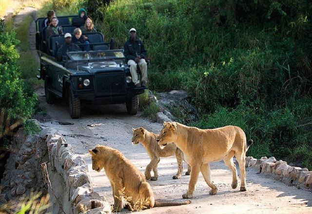 2 Night Safari Package at Skukuza Rest Camp Kruger National Park SANParks