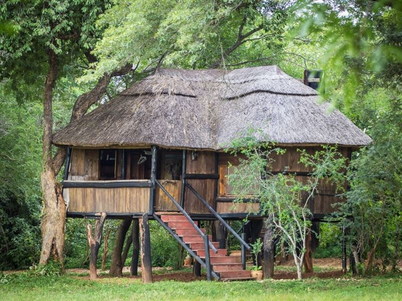 Ivory Lodge Hwange Your Cape Town South Africa