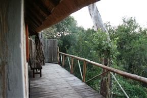 3 Night, 4 Day Marc's Treehouse Kruger Safari Photo