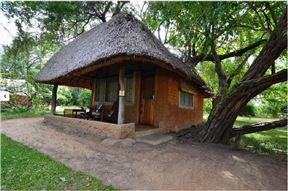 Wildlife Camp