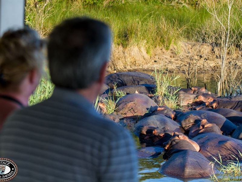 2 Night St Lucia Safari Package, St Lucia, Zululand 2