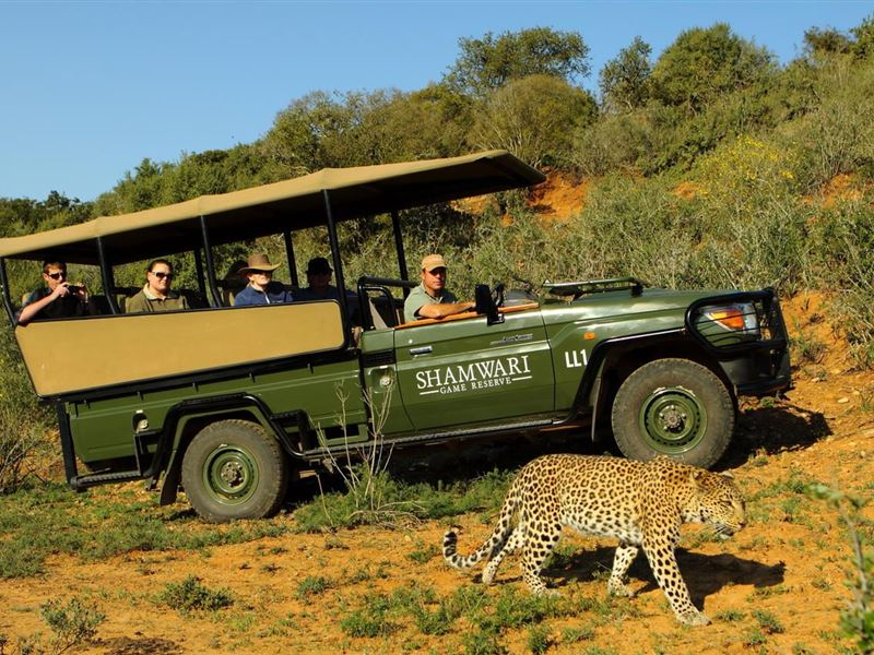 1 Night Shamwari Safari Package, Paterson, Addo, Sunday River Valley 5