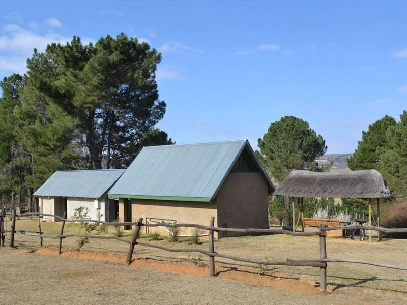 2 Nights Horse Riding Package at Shumba Valley, Fouriesburg, Eastern Free State 7