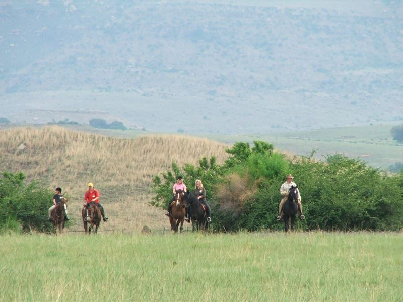 2 Nights Horse Riding Package at Shumba Valley, Fouriesburg, Eastern Free State 0