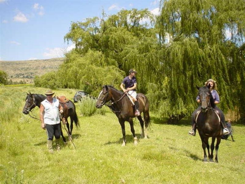 2 Nights Horse Riding Package at Shumba Valley, Fouriesburg, Eastern Free State 2