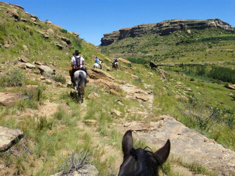 2 Nights Horse Riding Package at Shumba Valley, Fouriesburg, Eastern Free State 1