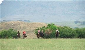 Accommodation at 2 Nights Horse Riding Package at Shumba Valley