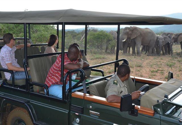 2 Night Kwafubesi Safari Package