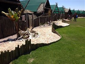 Tiger Reef Campsite
