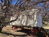 Clarens Ox-wagon Camp