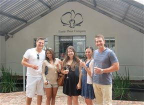 1 Day Franschhoek Foodie & Wine Tour - SPID:2730737