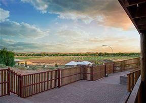 Kalahari Lion's Rest