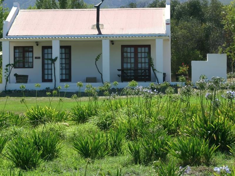 pet friendly Tulbagh