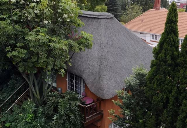 Tree Tops and Treats Guest House