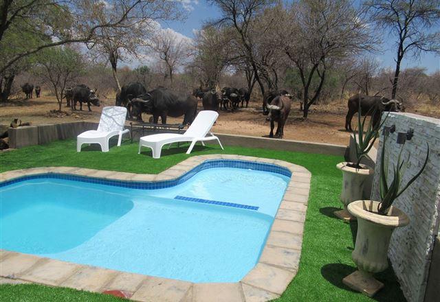 Chill-'n-Biki Lodge Mabalingwe