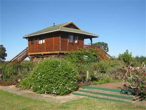 Accommodation at Neriifolia Cabin