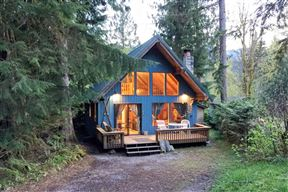 Mt. Baker Rim Cabin #53