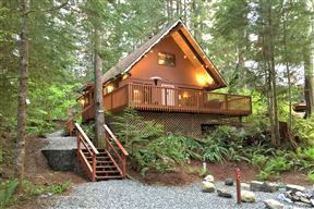 Snowline Cabin #98