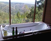 JACUZZI/SPA BATH HIGH UP! © FOREST VALLEY