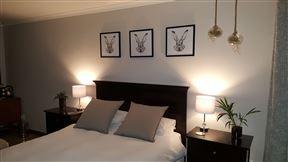 White Rabbit Luxury Studio Photo
