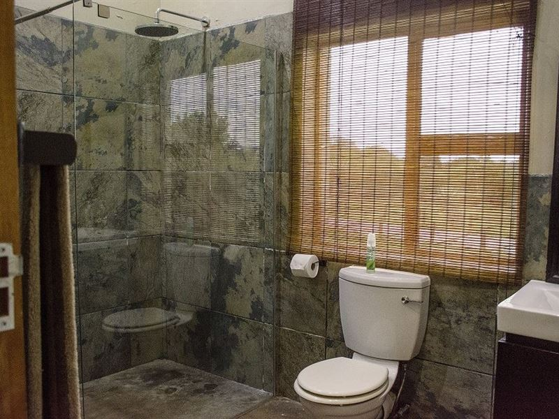 pet friendly Pumba Private Game Reserve