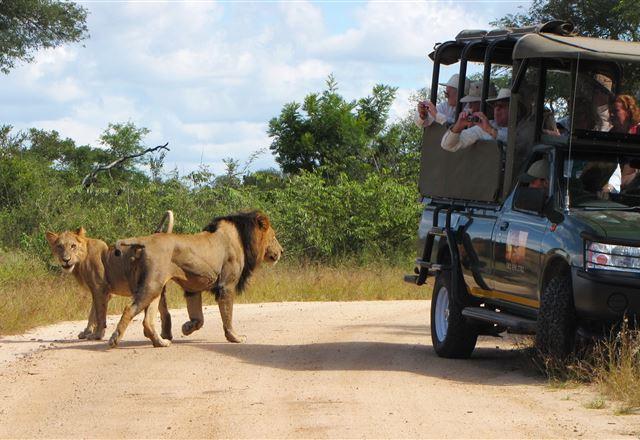2 Night Classic Kruger Safari Package