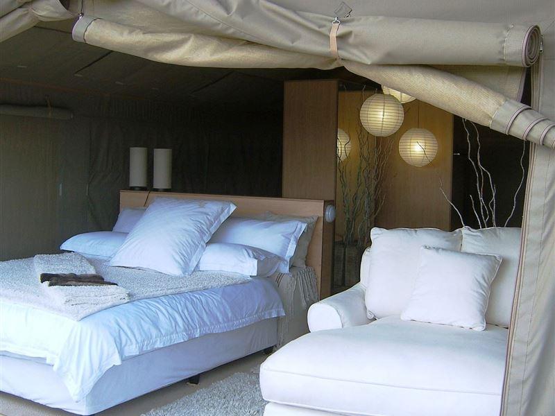 Thulani Game Lodge Amp Eco Estate In Northam Airportstay Co Za