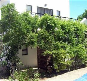 16 Rhodes-North Self Catering Apartments