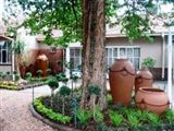 B&B300225 - Limpopo Province