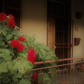 An-Huis