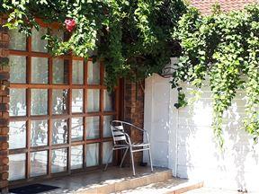 Leafy Studio Apartments